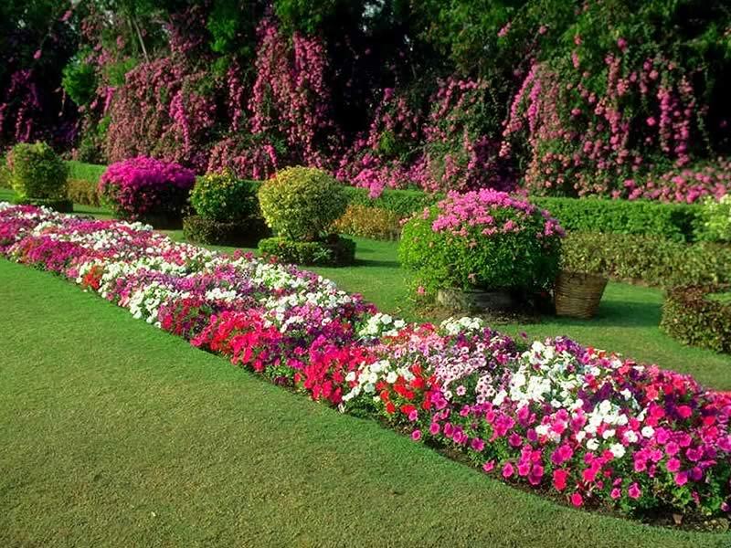 Bahçe İlaçlama Bahçelievler